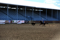 Sat May 4 NWSRA Steer Tripping - Round 2
